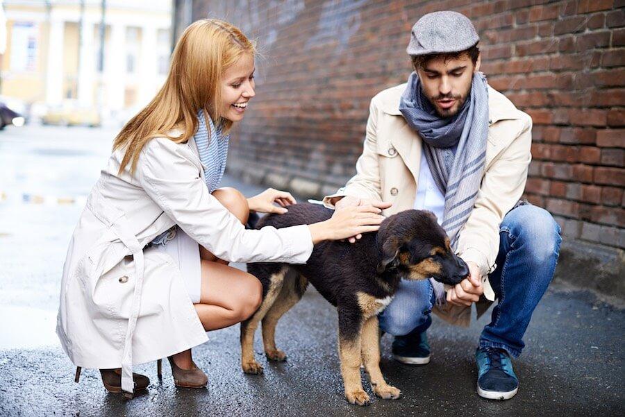 Erstes Date - Geht mit einem Hund spazieren